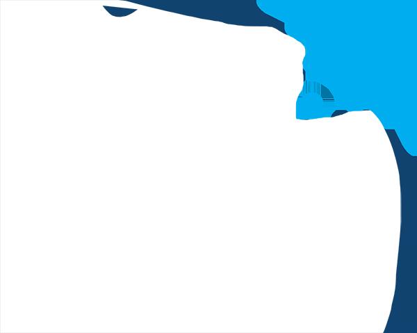 WiFi Securities Logo